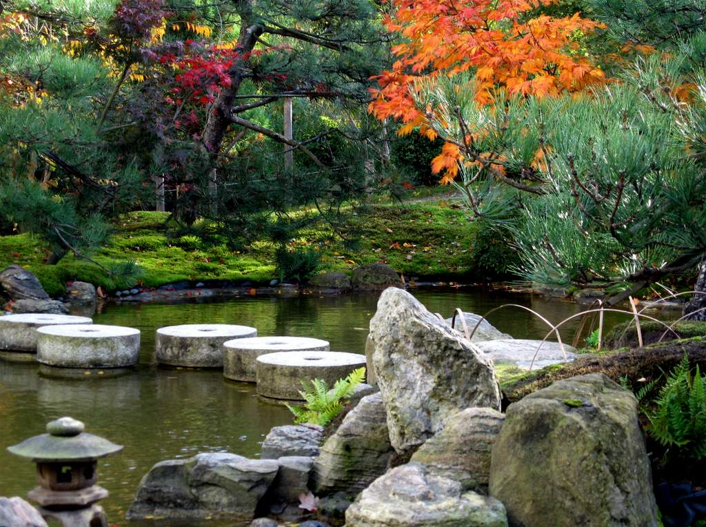 Zeitenwende, der Herbst, Foto: Christiane Metge